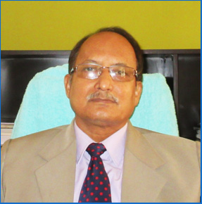Shri. H.N. Bora, (IAS) Chief Electoral Officer, Assam